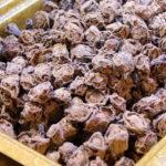 やめられないとまらない!台湾の乾燥梅菓子「話梅」が甘じょっぱい旨さ